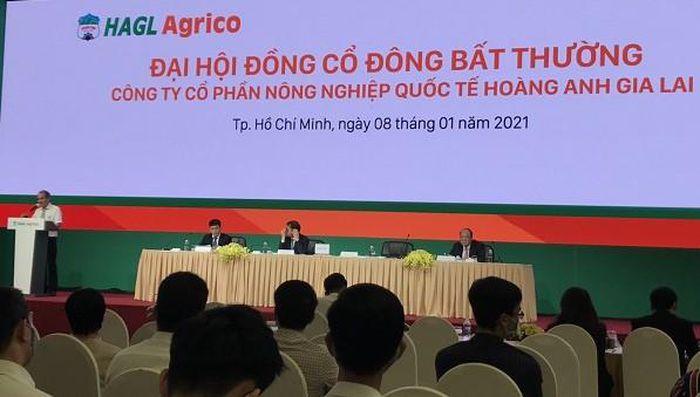Ông Trần Bá Dương chính thức ngồi ghế Chủ tịch HAGL Agrico thay bầu Đức