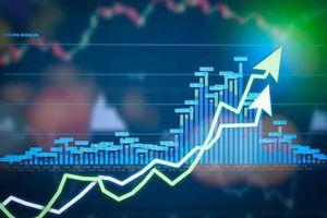 Thị trường chứng khoán 25/6: Thị trường tăng 10 điểm nhưng thanh khoản thấp
