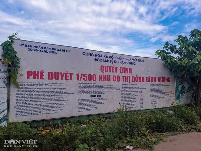 Khu đô thị Đông Bình Dương: Dự án
